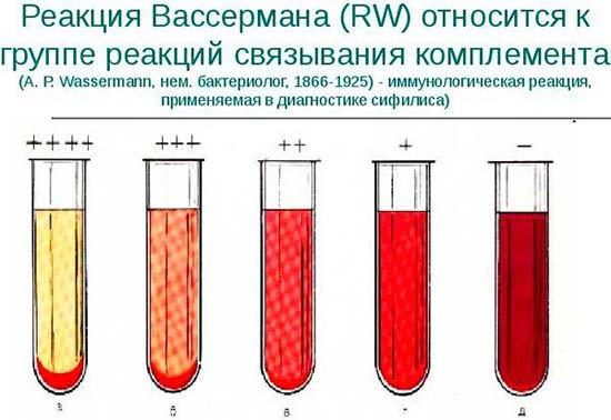 Анализ крови на rw это что Справка-вызов на сессию Улица Юных Ленинцев