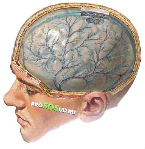 органическое поражение мозга фото
