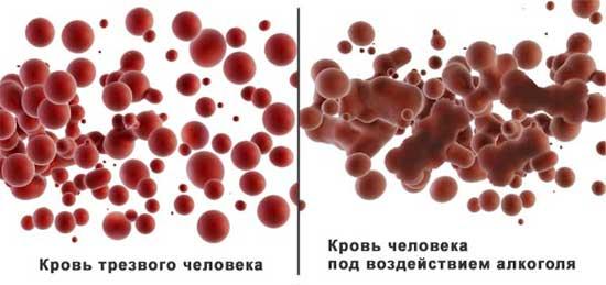 проявление алкоголя в крови человека