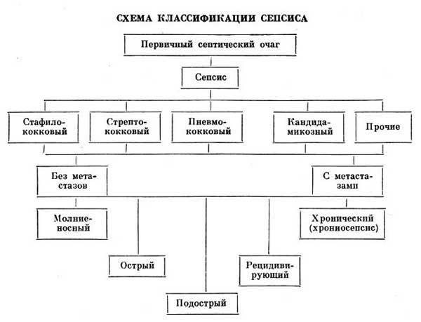 классификация сепсиса
