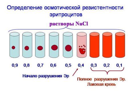метод осмотической резистентности