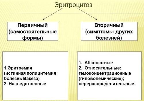 виды эритроцитоза